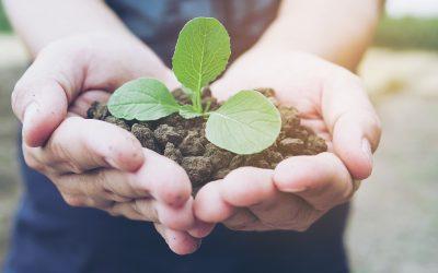 Las empresas familiares alineadas con la sostenibilidad